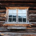 Wet Rot 101: What is it and How do I Avoid it?