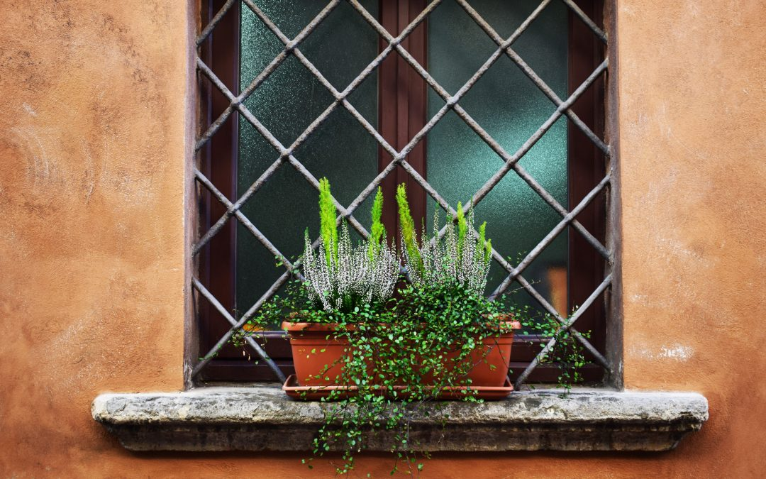 Plant Ideas You Should Be Trying To Make Beautiful Window Boxes