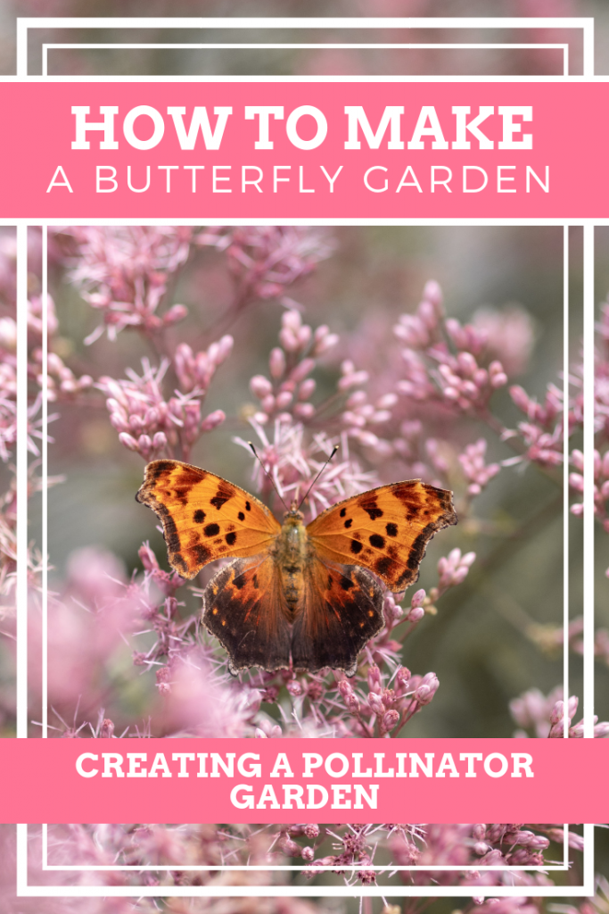 How To Make A Butterfly Garden Pinterest Image.