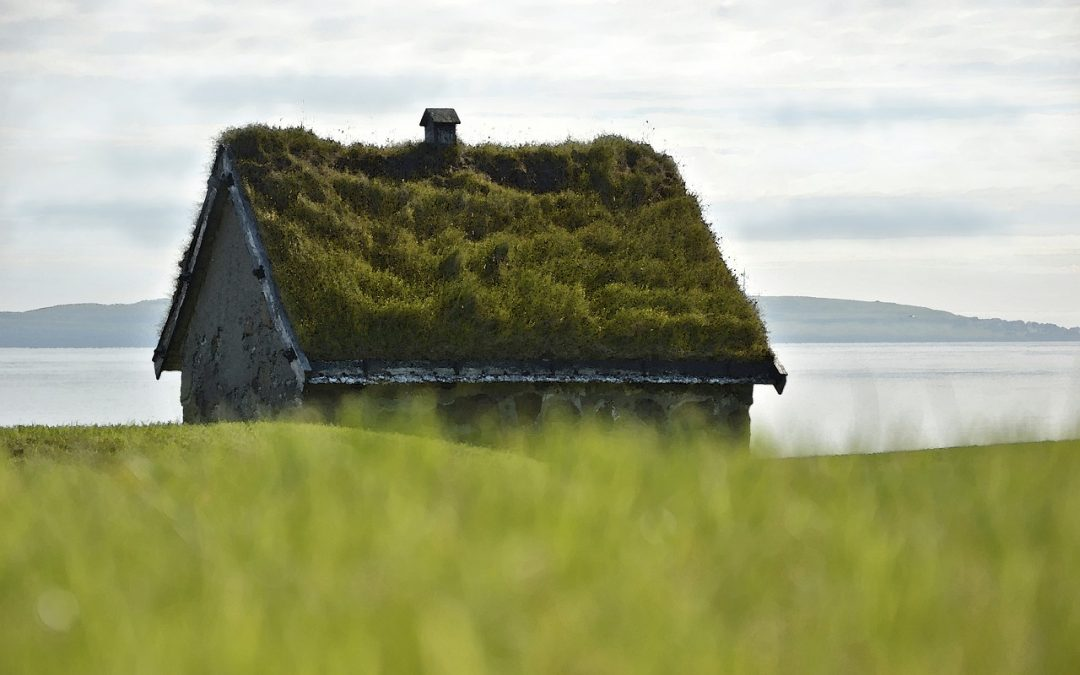 5 Advantages and Disadvantages of Green Roofs